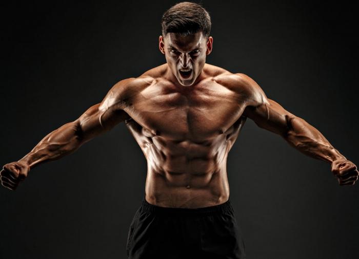 Muskeln – die Apotheke des Körpers - FitnessPoint SportPalast Bad ...